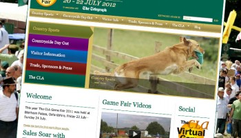 gamefair1
